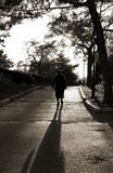 Silhouette of the old woman Royalty Free Stock Image
