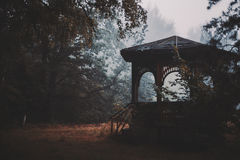 Silhouette of old wooden alcove in forest Royalty Free Stock Photo