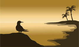 Silhouette of one bird in beach Royalty Free Stock Images