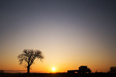 Silhouette of one tree and semi truck at sunset Stock Photos