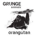 Silhouette Orangutan In Grunge Design Style Animal Icon Stock Photos
