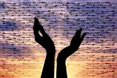 Silhouette outstretched hands to the sky. Concept of the religion of refugees. Silhouette outstretched arms to the sky against a background of barbed wire at Royalty Free Stock Photos