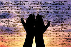 Silhouette outstretched hands to the sky. Concept of the religion of refugees. Silhouette outstretched arms to the sky against a background of barbed wire at Royalty Free Stock Photography