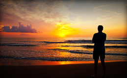 Silhouette på soluppgång Royaltyfria Foton