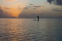 Silhouette in of paddle boarder in the Pacific Ocean royalty free stock image