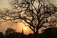 Silhouette of Pagoda twilight scenes in Ayutthaya historical park in Thailand. Royalty Free Stock Photo