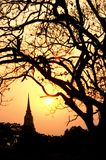 Silhouette of Pagoda twilight scenes in Ayutthaya historical Park. Stock Photo