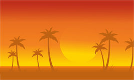 Silhouette of palm with big sun scenery Royalty Free Stock Photo
