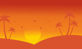 Silhouette of palm and bird at sunset Stock Image