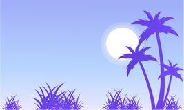 Silhouette of palm and grass scenery Royalty Free Stock Photography