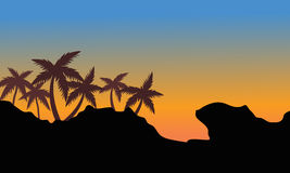 Silhouette of palm on the hills Stock Photography