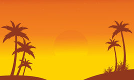 Silhouette of palm on seaside scenery Royalty Free Stock Photography