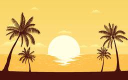 Silhouette palm tree on beach in flat icon design under sunset sky background Stock Image