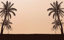 Silhouette palm tree on beach and sunset sky with vintage filter background Stock Photos