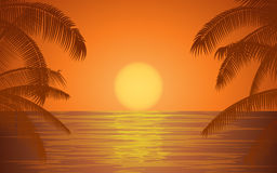 Silhouette palm tree on beach under sunset sky background Stock Photo
