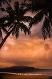 Silhouette of palm tree at beautiful tropical sunset Royalty Free Stock Images