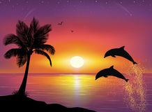 Silhouette of palm tree and dolphins. Silhouette of two dolphins jumping out of water in the ocean and silhouette of palm tree in the foreground. Beautiful Stock Image