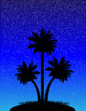 Silhouette of a palm trees at night. Illustration of a silhouette of a palm trees at night Royalty Free Stock Photos