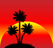 Silhouette of a palm trees at sunset. Illustration of a silhouette of a palm trees at sunset Royalty Free Stock Photos