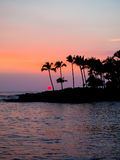 Silhouette of Palm Trees at Sunset Hawaii Stock Photography