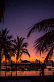 Silhouette of palm trees at sunset, vintage filter Royalty Free Stock Photo