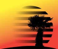 Silhouette of Palm Trees. Vector Illustration. Royalty Free Stock Photography