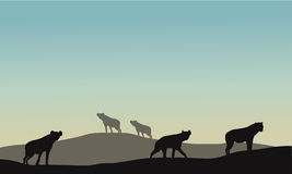 Silhouette of panther in hills Royalty Free Stock Photos
