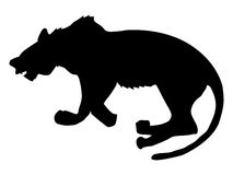 Silhouette of panther Royalty Free Stock Photography