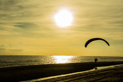 Silhouette of paraglider on the beach with sunset Stock Photo