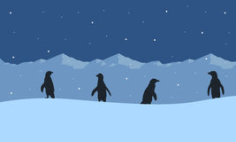 Silhouette of penguin on ice mountain scenery Royalty Free Stock Images