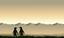 Silhouette penguin on mountain background scenery Stock Photos