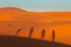 Silhouette of people on dunes in desert Stock Photos