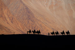 The silhouette of people riding a camel in the desert. With magnificent mountain views in Ladakh, Leh, India Royalty Free Stock Image