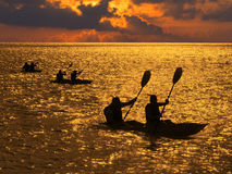Silhouette of people rowing in kayaks. At sunset Royalty Free Stock Image