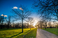 Silhouette of people walking towards sunset at a park Stock Photography