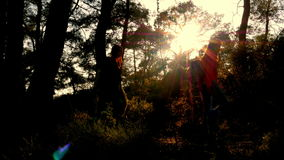Silhouette people walking trekking nature at sunset stock video