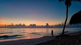Silhouette of a Person Near Coconut Tree on Shore during Golden Hour Royalty Free Stock Images