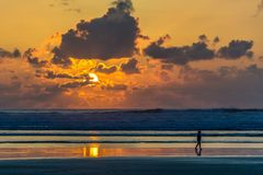 Silhouette of Person Walking on Seashore during Sunset Stock Image