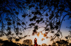 Silhouette Photo of 2 Person Surrounded Trees during Dawn Royalty Free Stock Image