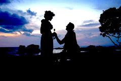 Silhouette Photo of Man Kneeling in Front of Woman Giving Flower Royalty Free Stock Photography