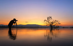 Silhouette photographer taken alone tree in the lake, Royalty Free Stock Photography