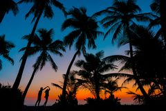 Silhouette Photography of Man and Woman Beside Trees during Sunset Stock Photos
