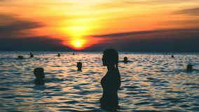 Silhouette Photography of People Swimming on the Beach during Golden Hour Stock Images