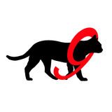 Silhouette pictogram Cats have 9 lives  Stock Image