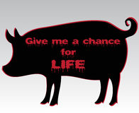 Silhouette of pig with bloody motto Stock Photography