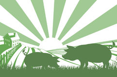 Silhouette pigs on farm. An illustration of a silhouette pigs in a field on a farm with sunrise and farmhouse in the background Royalty Free Stock Image