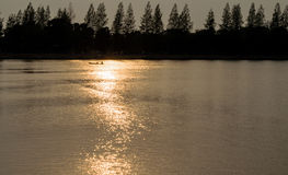 Silhouette Pine Tree and Reflection Sunbeam on River Royalty Free Stock Images