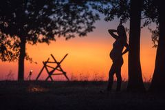 Silhouette of a pregnant girl in a field at sunset Royalty Free Stock Photo