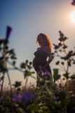Silhouette of a pregnant woman at sunset. In the park stock image