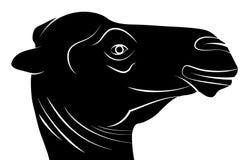 Silhouette principale de chameau, illustration de vecteur Image libre de droits